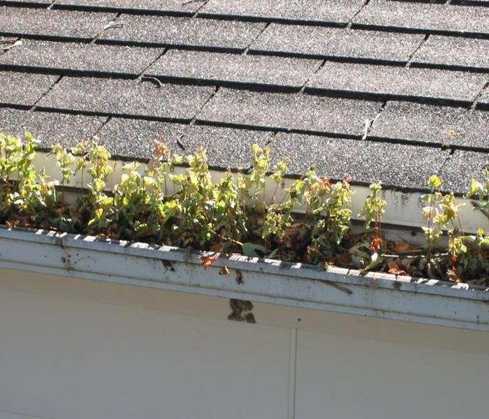 Cleaning Cleaning Gutters Prevents Water Damage