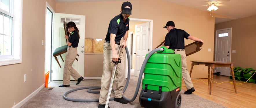 Livonia, MI cleaning services